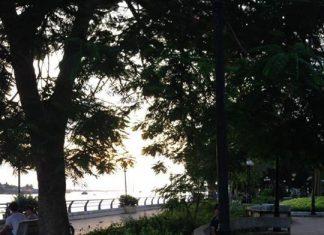 Ai tối tối thường ra đây bắt ếch nè   P/s : Công viên Vườn Hoa Lạc Hồng ️️️️