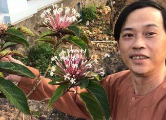 Nghệ sĩ Hoài Linh xúc động chia sẻ về người phụ nữ trên cả tuyệt vời của mình