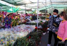 Tiền Giang tổ chức các hoạt động vui xuân an toàn, tiết kiệm và phòng chống dịch Covid-19