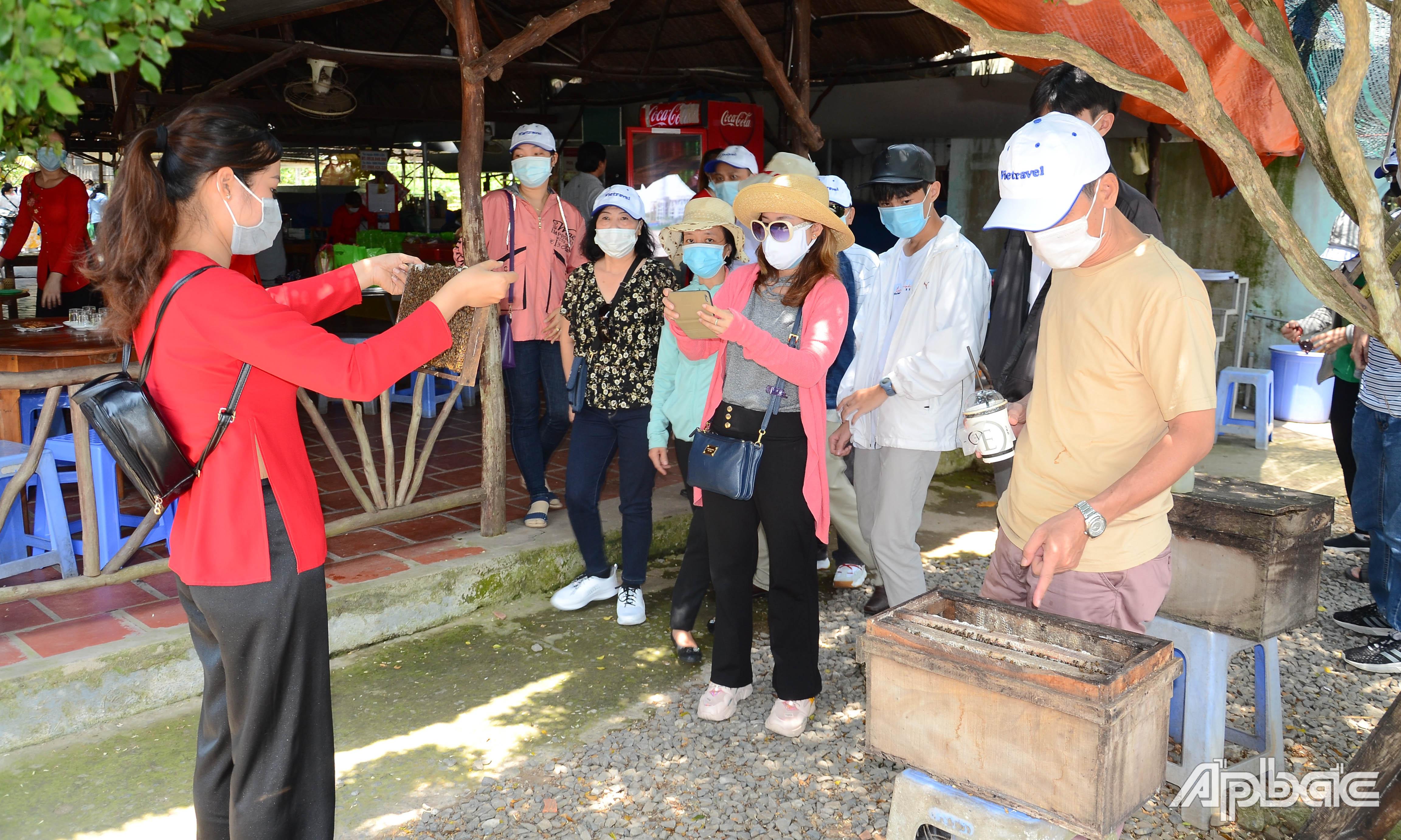 Khách du lịch tìm hiểu nghề nuôi ong lấy mật tại cù lao Thới Sơn.